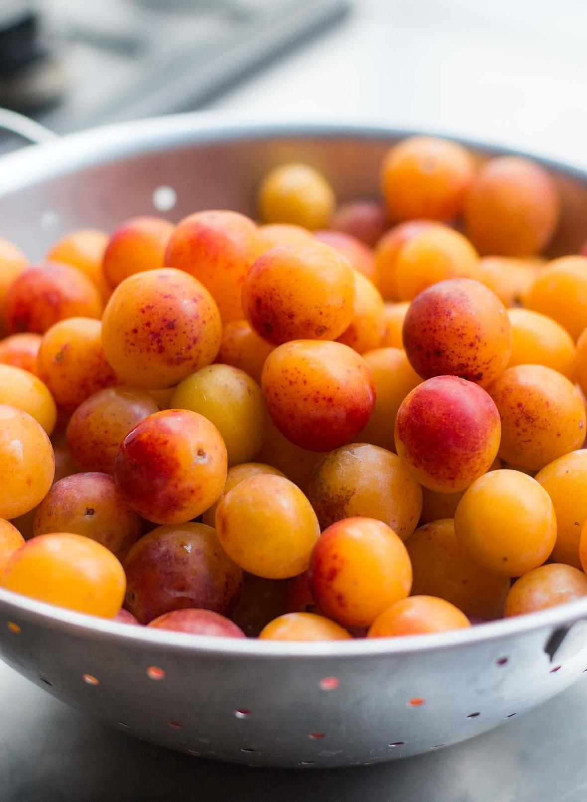 plums for sept newsletter-2