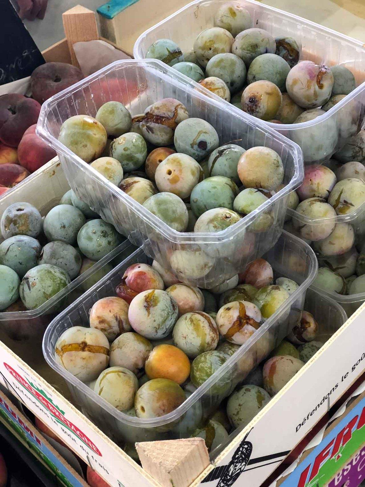 plums for sept newsletter