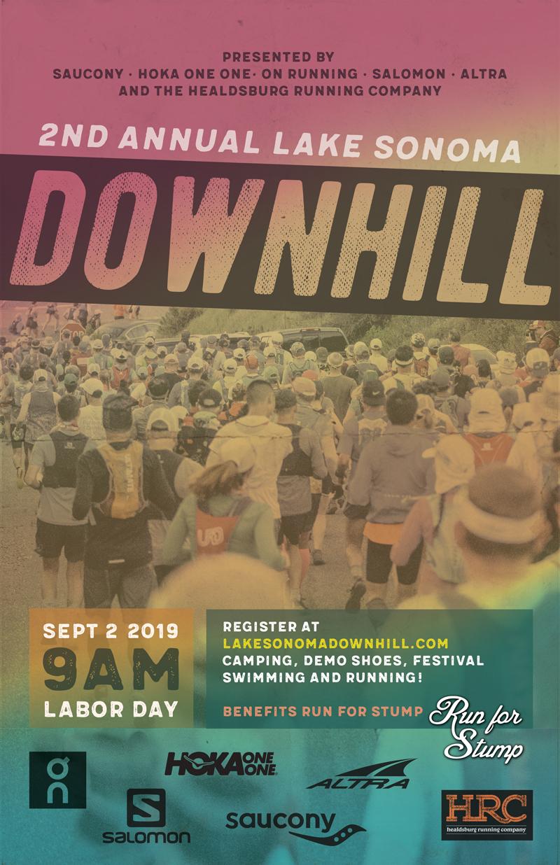 LS downhill poster 2019