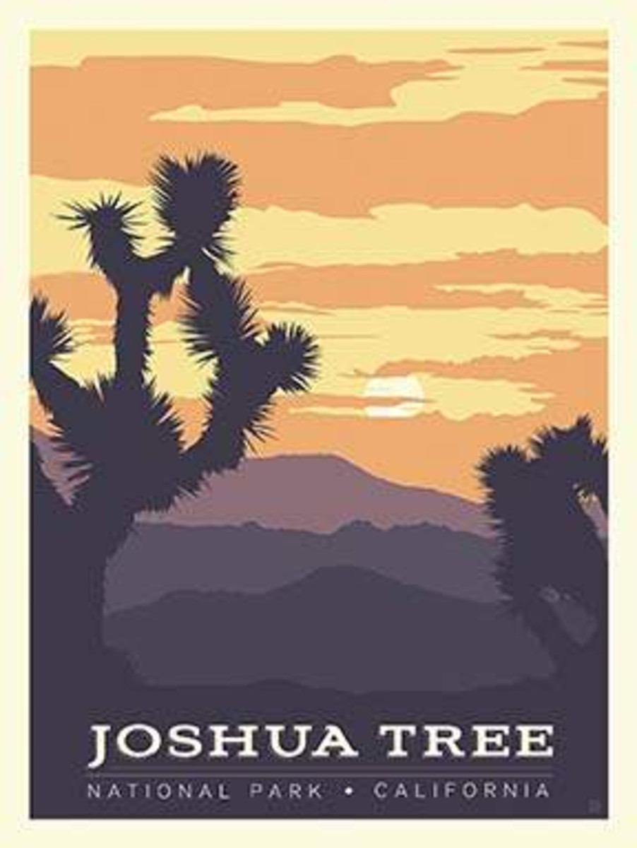 National Parks Poster Panel Joshua Tree - P8791-JOSHUATREE