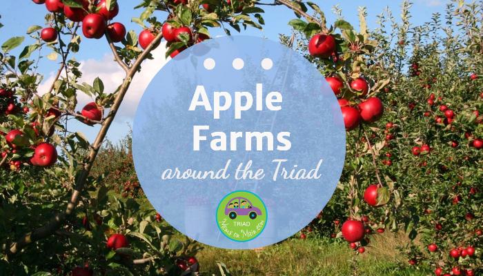 apple-2-lead