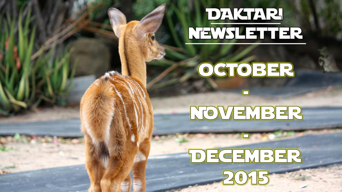 Newsletter December