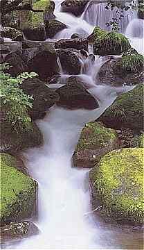 suwa water falls2