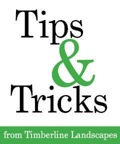Tip Tricks