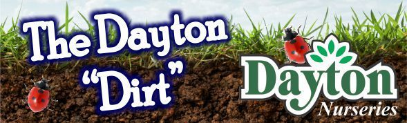 DaytonDirtTopGraphicEmail