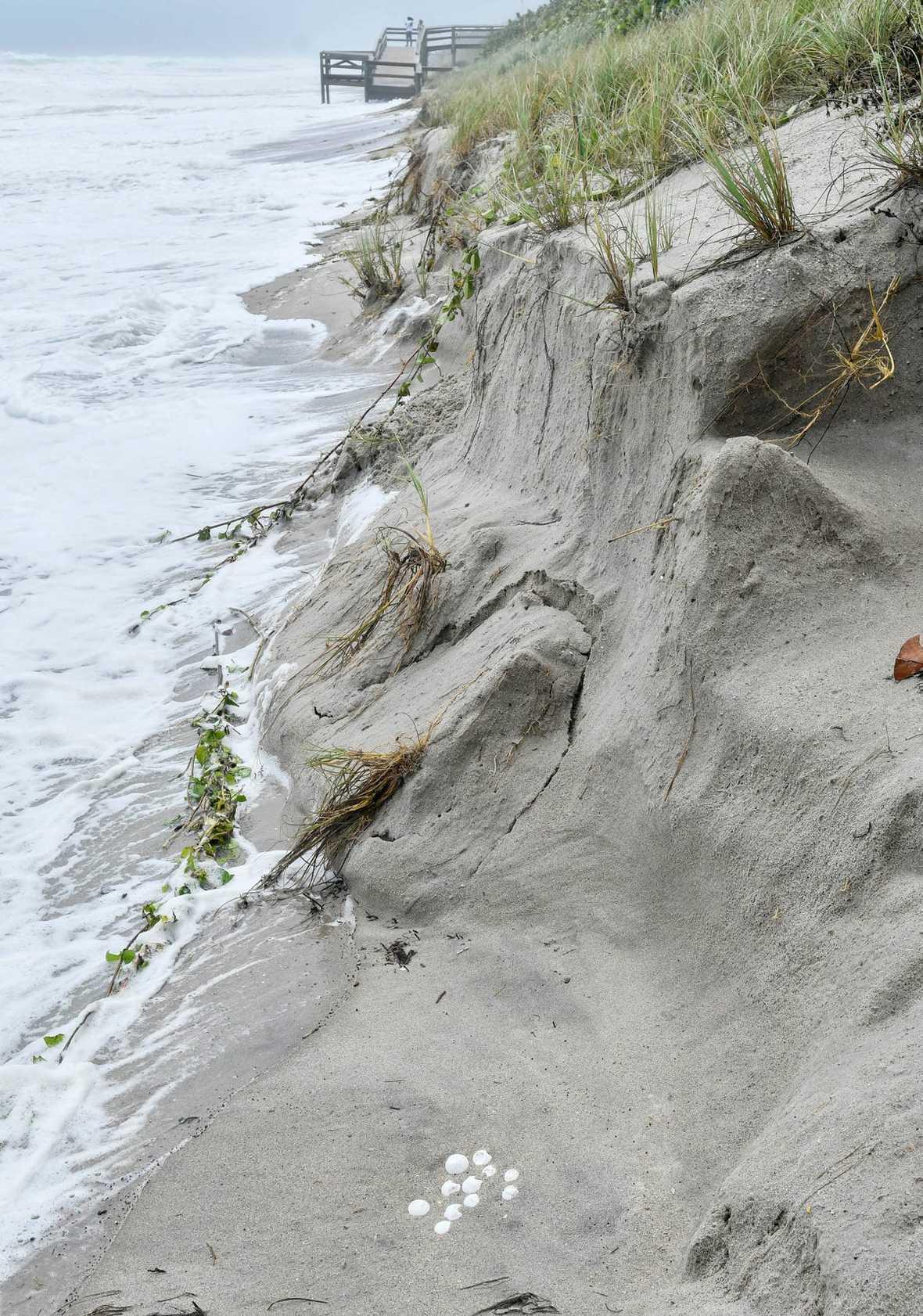 dorian beach