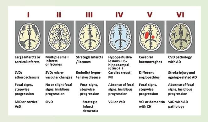 JAD-CME-article10 madmimi-visual-260919