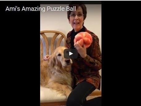 PuzzleBallVideo