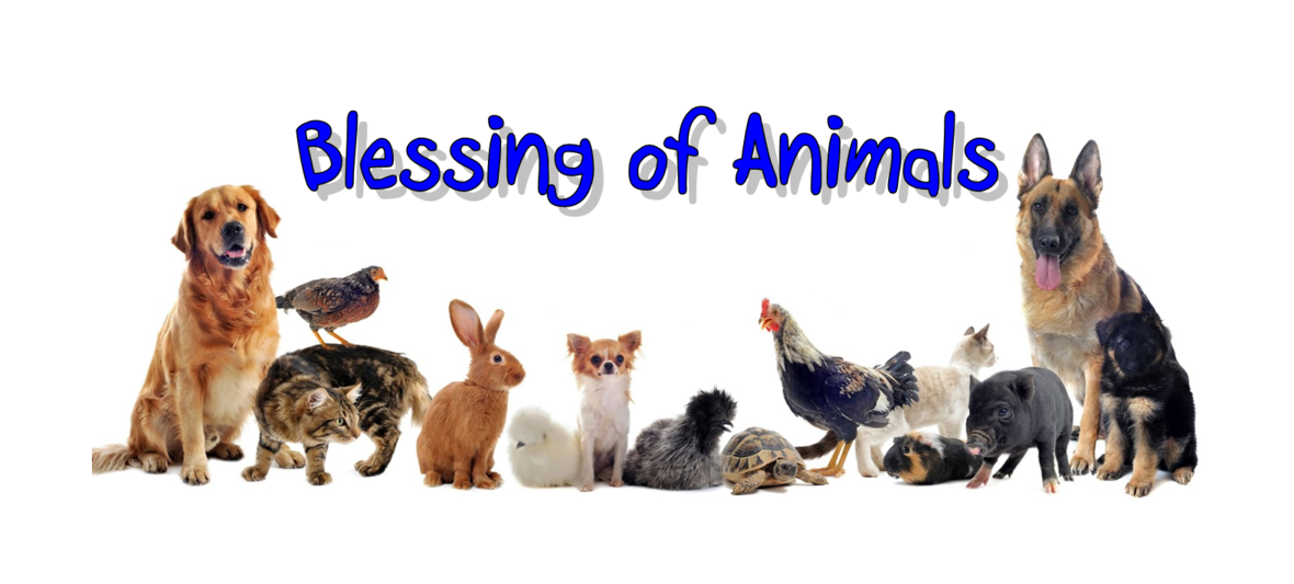 blessing animals FB