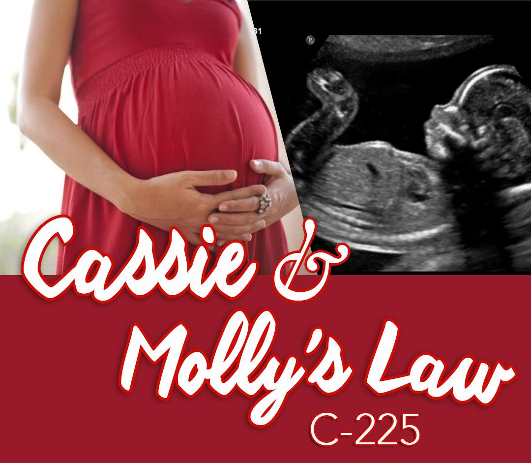 CassieMollyLaw