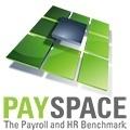 PAYSPACE Logo 500x500