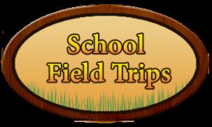school field trips-300x180