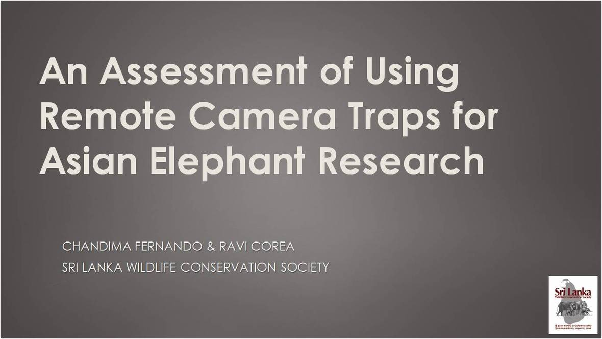 IEF Remote Camera Trapping Presentation
