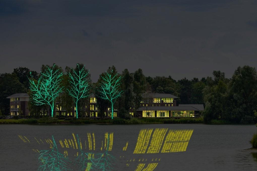 lichtgevende bomen 1 HH