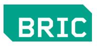 BRIC Brooklyn Youth Media Festival