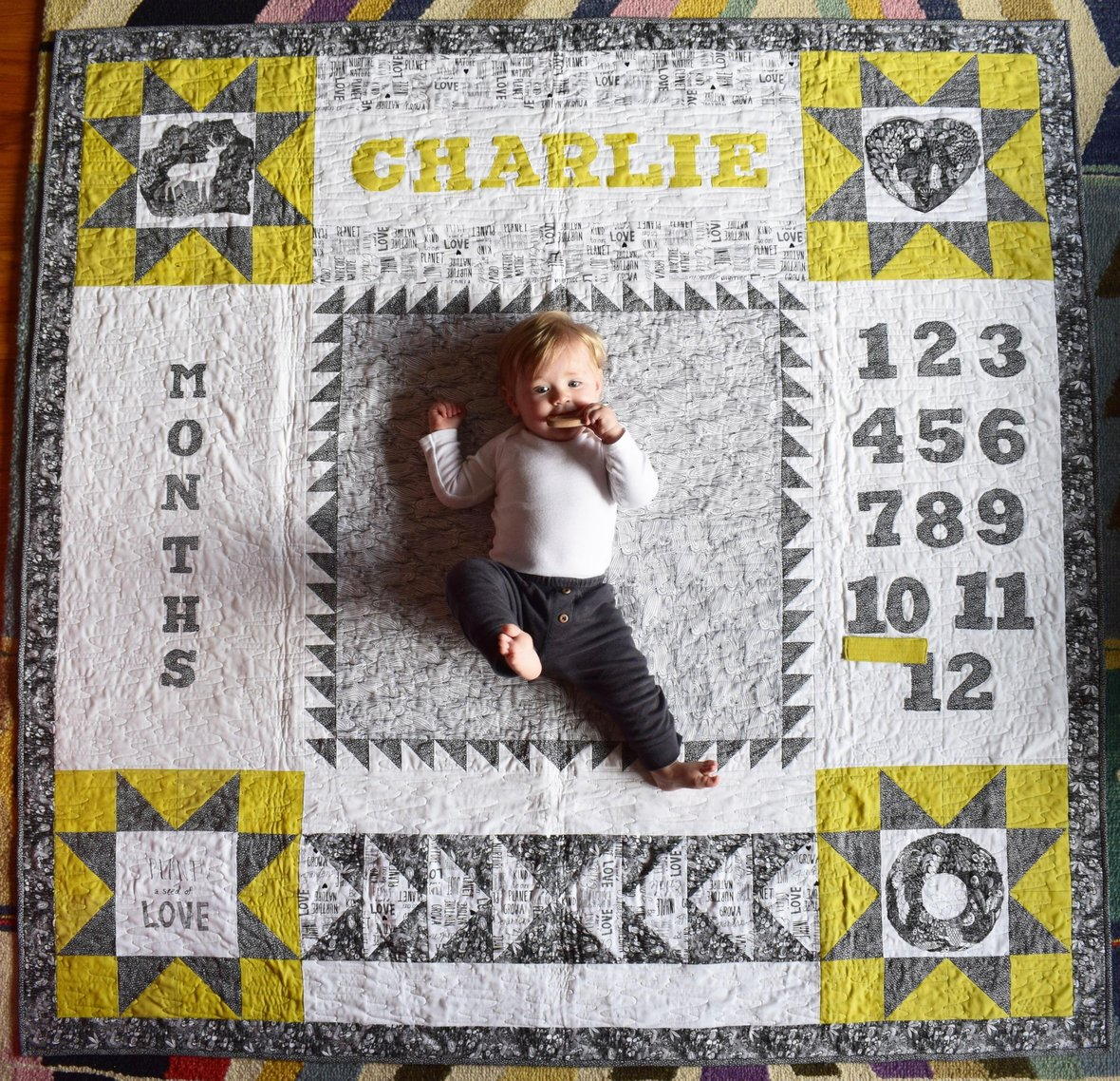Love the Earth Baby QUilt