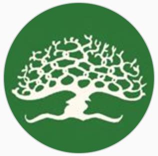 mtso tree circle