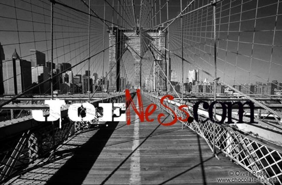 joe ness banner website