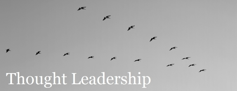 thought leadership banner 01b sml