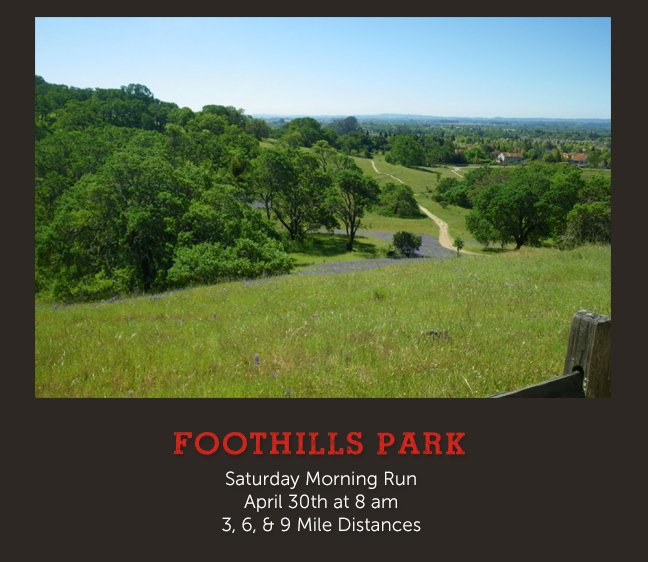 upcoming pub run foothill