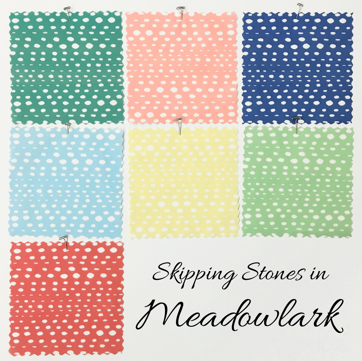 Stepping Stones in Meadowlark