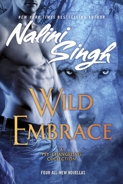 Wild Embrace US cover - Copy