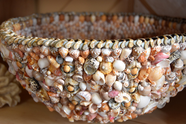 Shell-Bowl-Closeup1