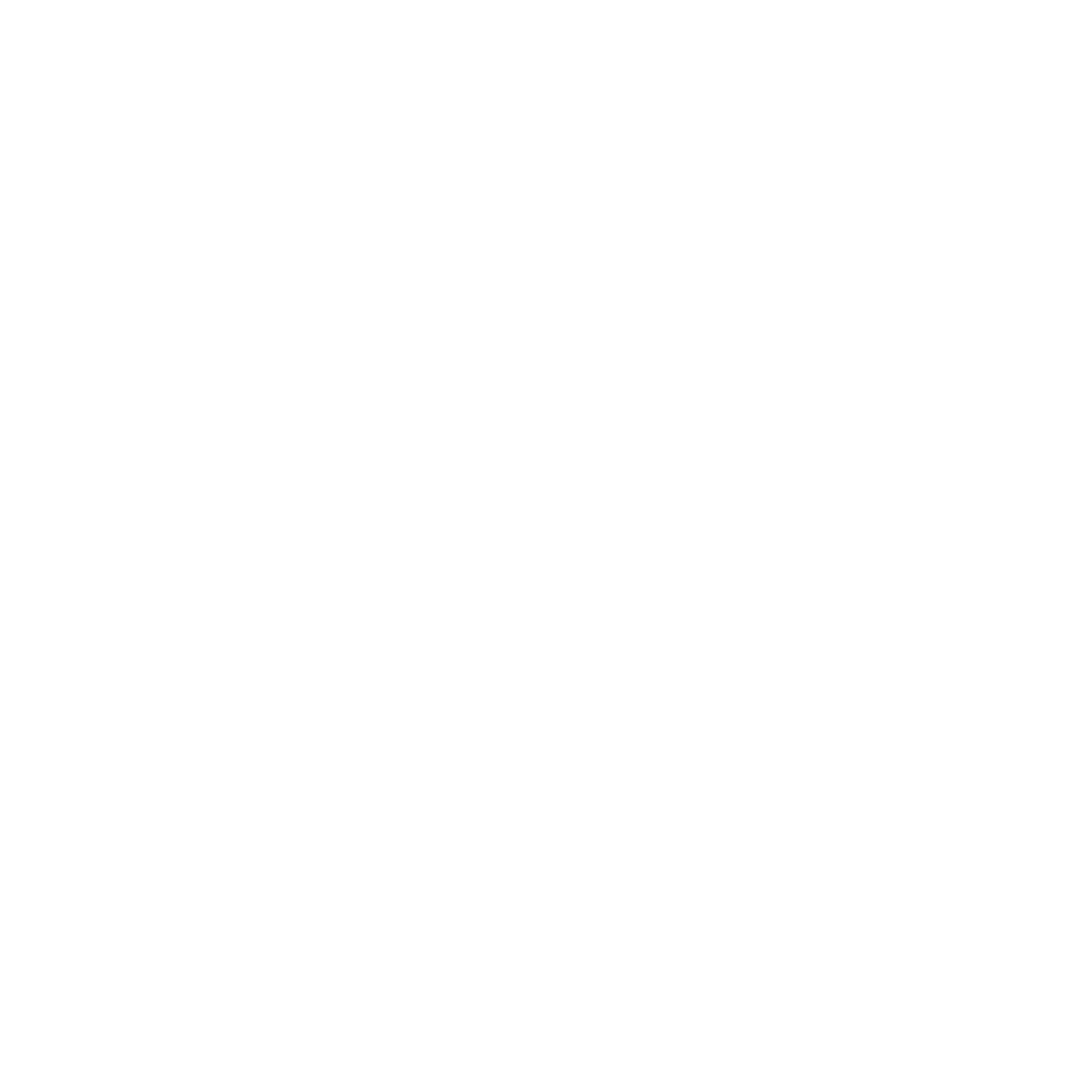 logo appstore blanc