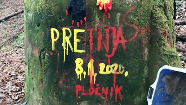 Plochnik-2020-01-08