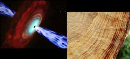 gamma-ray-tree-rings