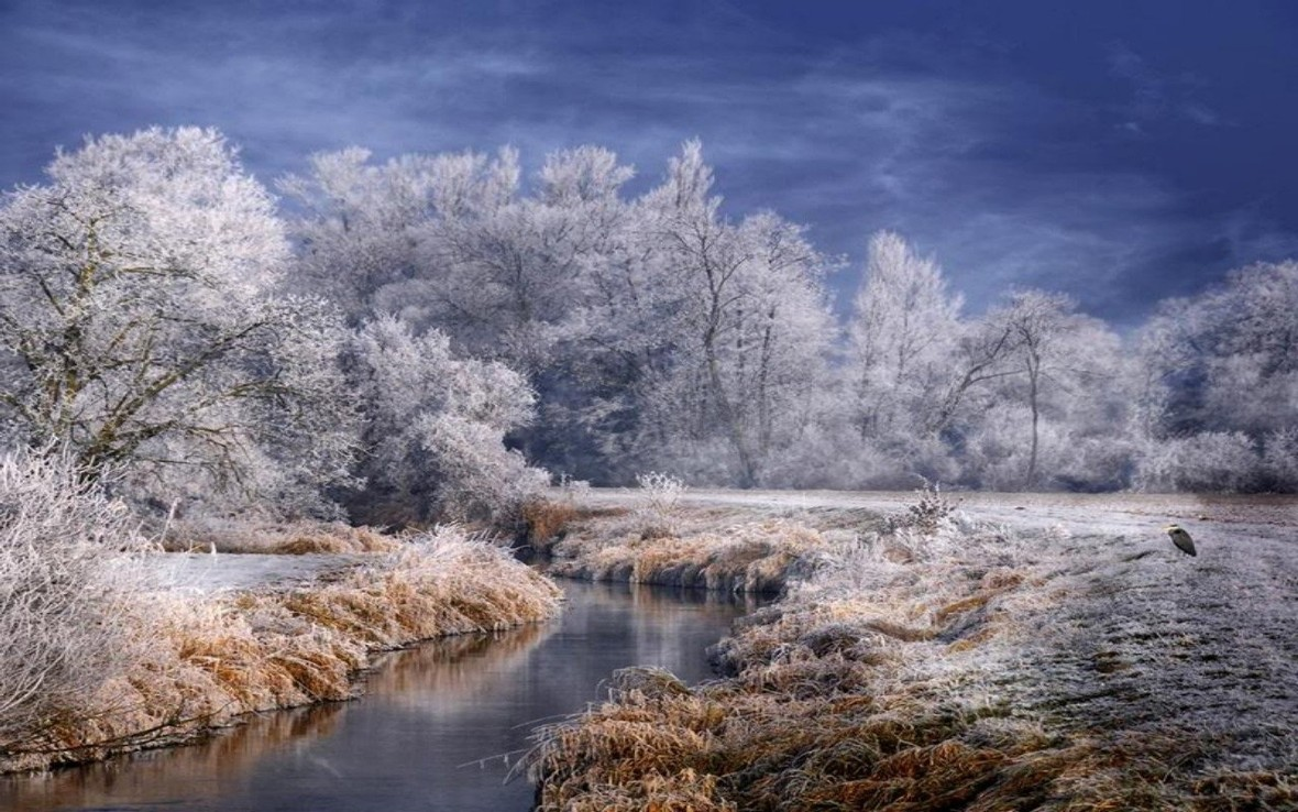 winter-winter-forest-landscape-frost-trees-stream-desktop-background-images