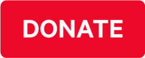 DONATE-BUTTON-300x120-300x120