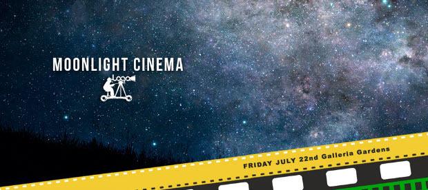 Indie Film Loop - Moonlight Cinema