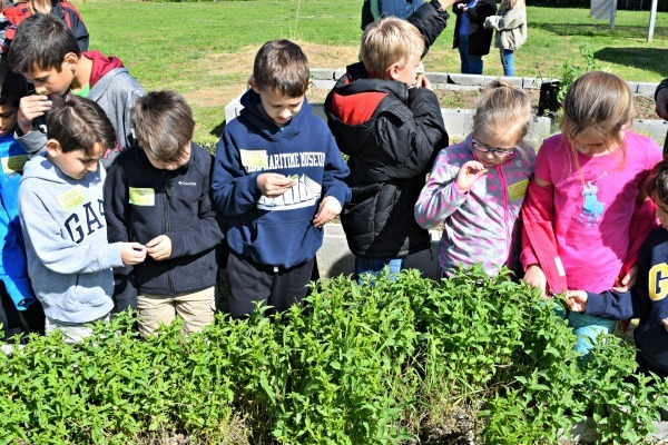 rango-alegre-farm-fieldtrip-home-school-spring-break-science-day-6