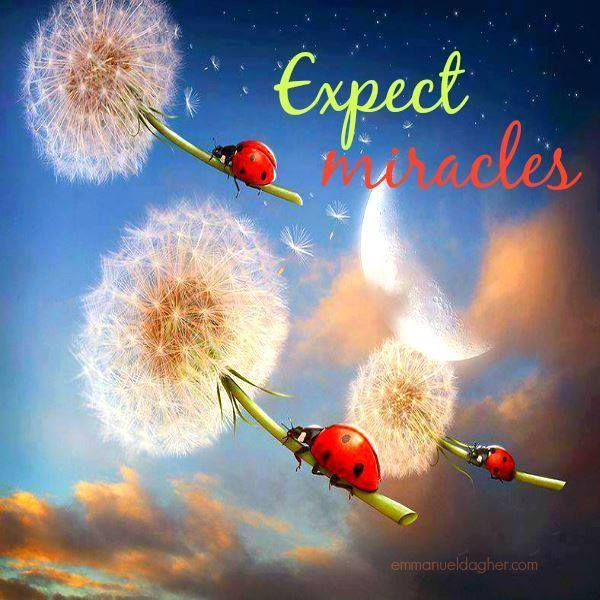 expect-miracles