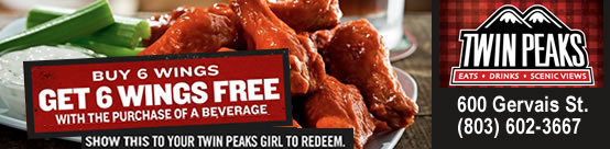 Twin Peaks Banner ad