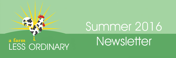 AFLO Newsletter Banner Summer 2016