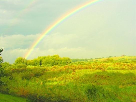 CD Rainbow over Waubesa Wetlands during flood-554