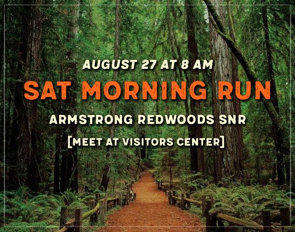 armstong redwood snr