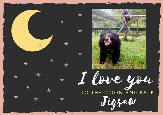 Moon Bear thank you