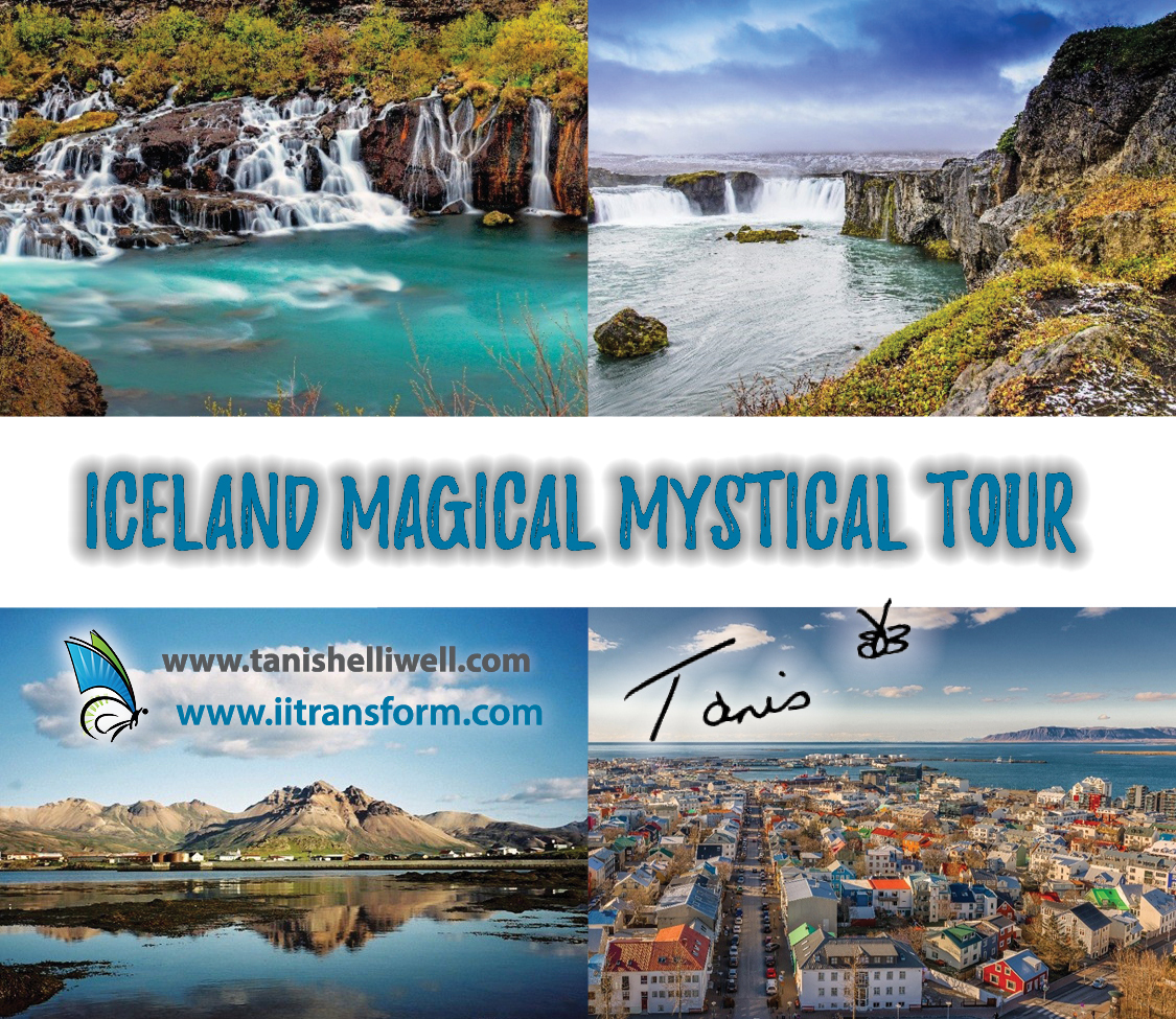 Iceland-discount
