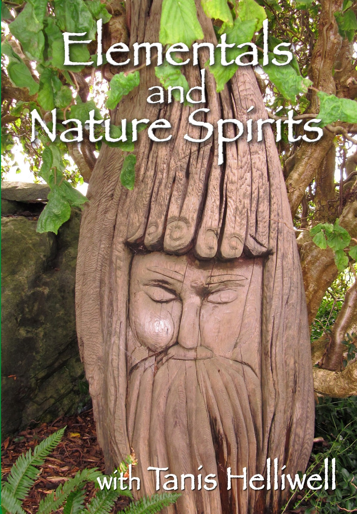 DVD-elementals-and-nature-spirits-front only