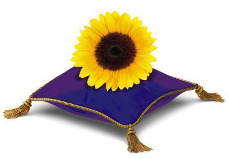 sunflower-pillow grande