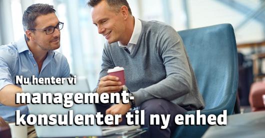 managementkonsulenter