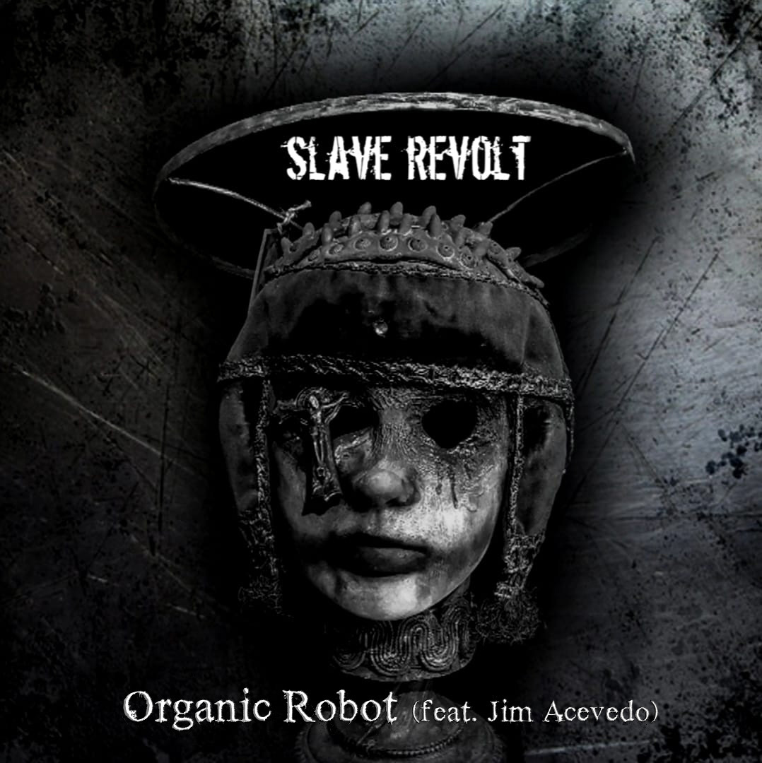 organic robot cover