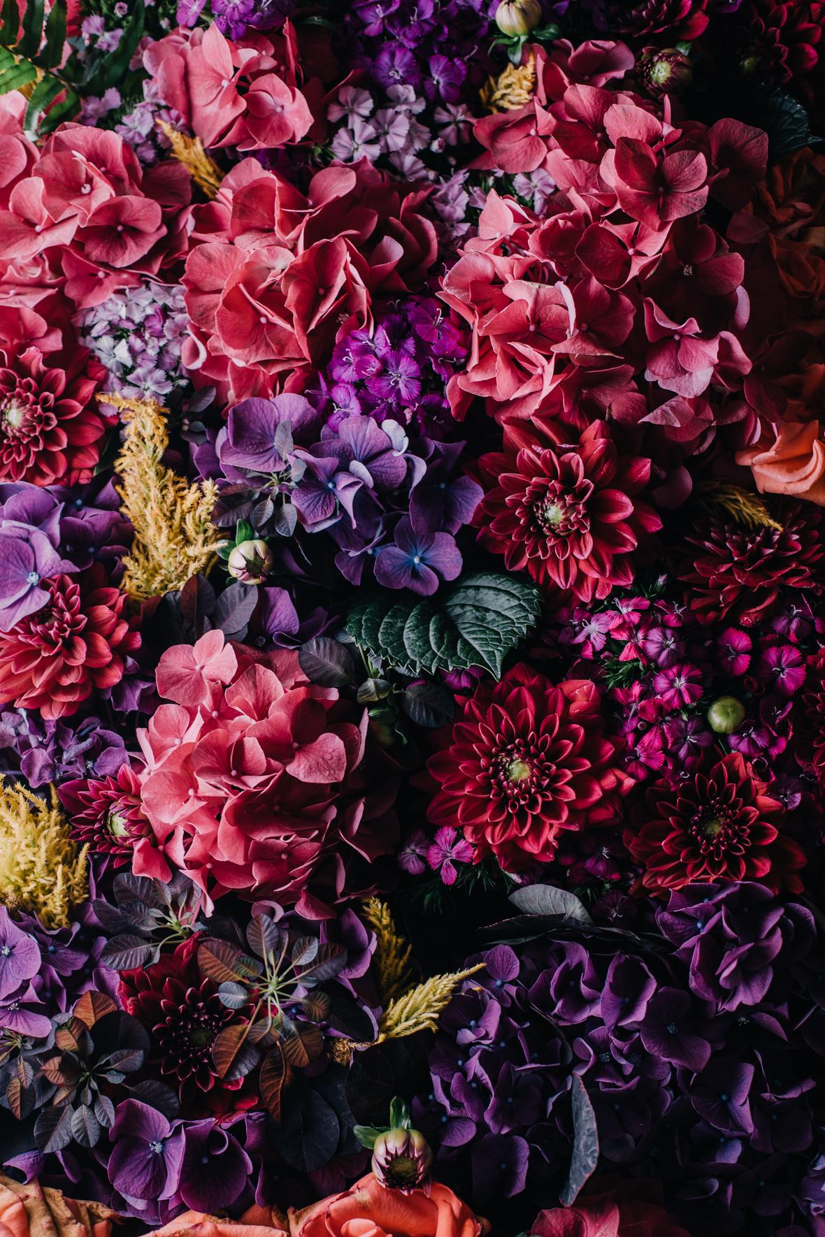 Death to stock photography bonus floral 6