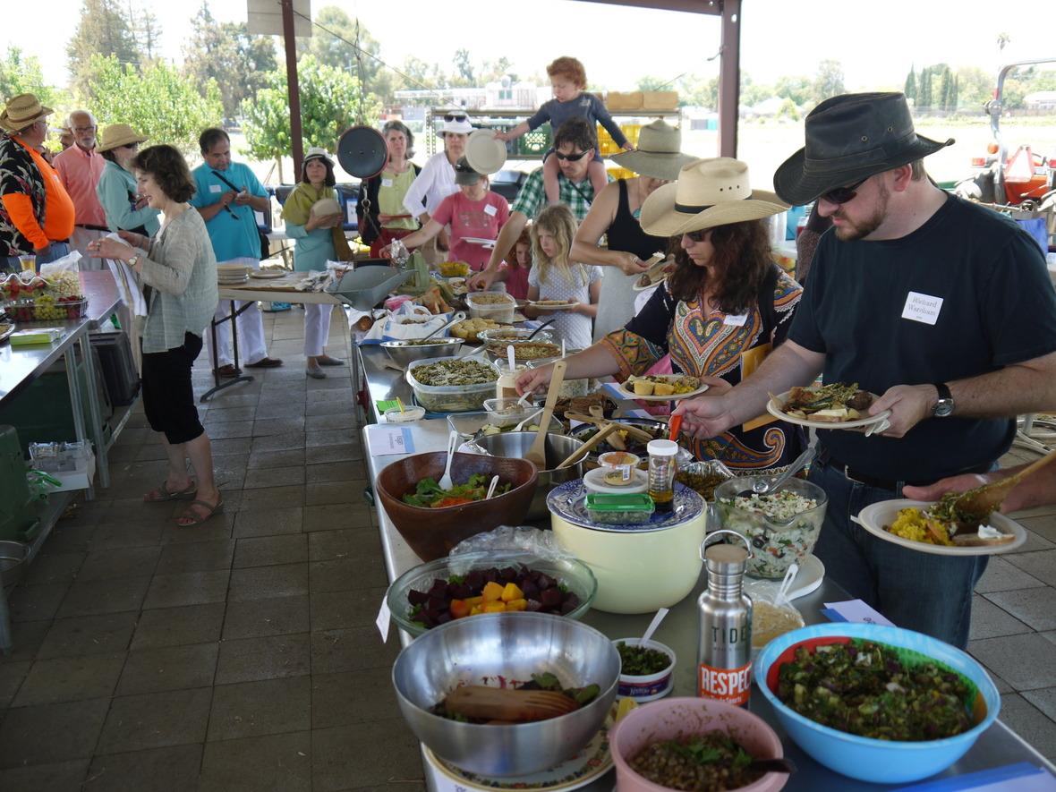 Farm Fest  10