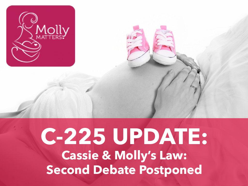 c225 nat update