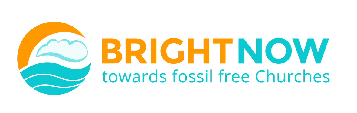 Bright Now Logo 2016