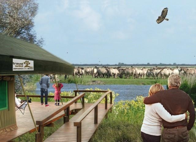 Krugerpark1 HH